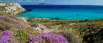 IMG Traghetti Isole Egadi 2018 - Rotte e compagnie